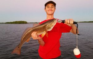 huge-bonita-springs-estero-bay-redfish.jpg