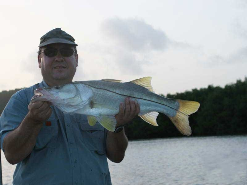 fly-fishing-for-snook-at-dawn.jpg
